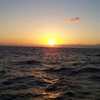 צימרים רוז - ים המלח